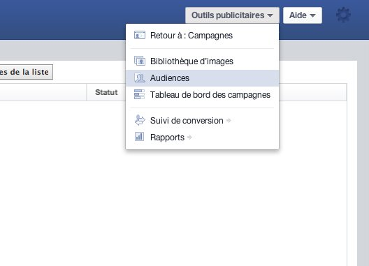 Habefast Blog Article Facebook Power Editor 01