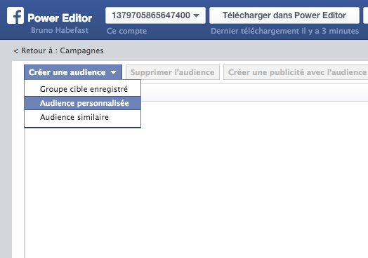 Habefast Blog Article Facebook Power Editor 02