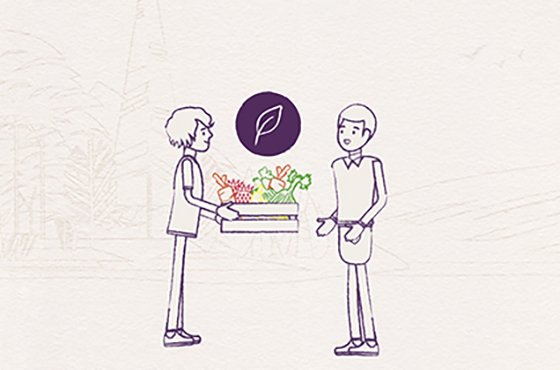 Habefast Blog Article Motion Design