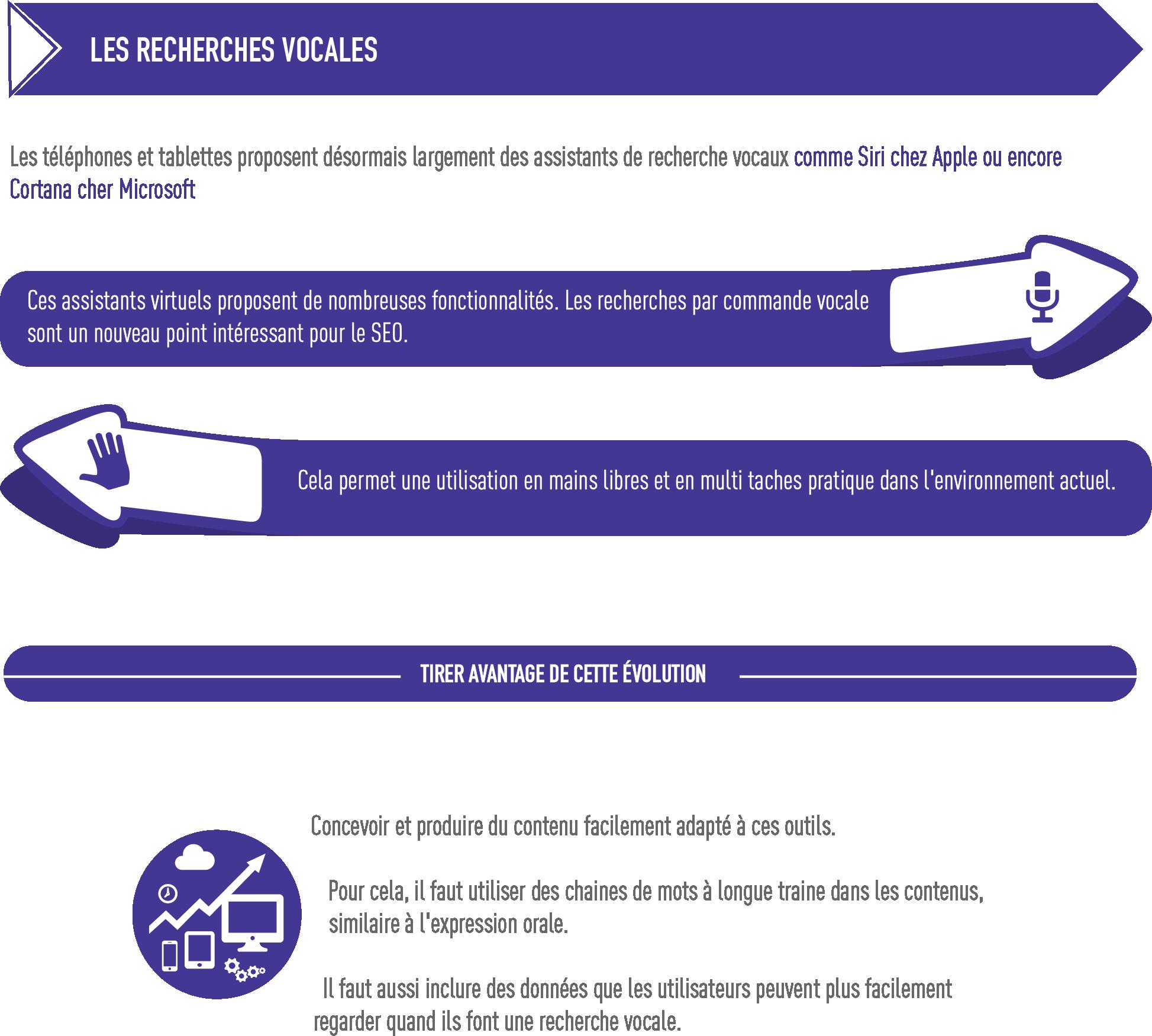 Habefast Infographie Seo Strategie Referencement Naturel Recherche Vocale 2018