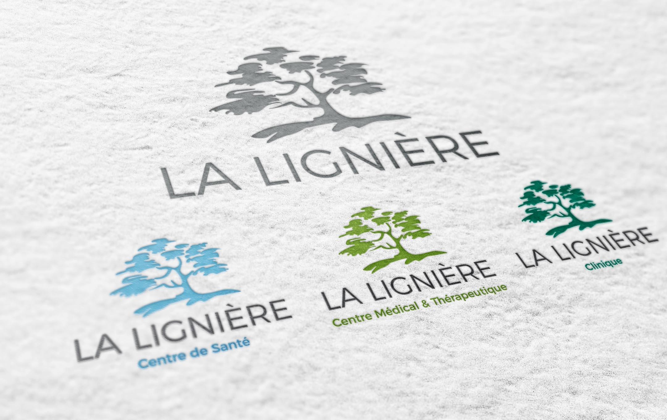 Habefast Etude De Cas La Ligniere Logo